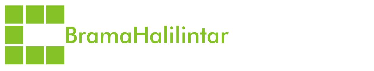 Brama Halilintar